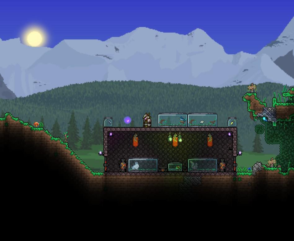 Terrarium Terraria Wiki Fandom Powered By Wikia