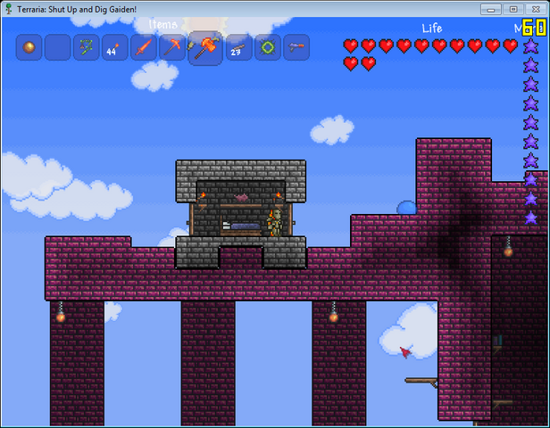File:Terraria dungeon home.png