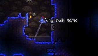 File:Fungi Bulb.jpg
