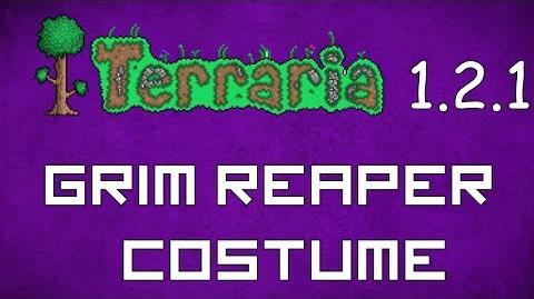 Grim Reaper Costume - Terraria 1.2