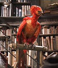 File:Phoenix Bird.jpg