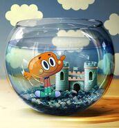 Darwin Fishbowl