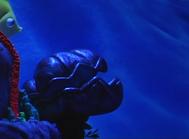 The Backyardigans Giant Clam Sea Deep in Adventure