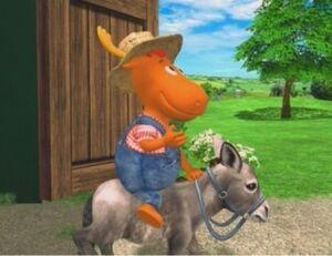 Donkey-Rider