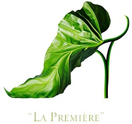 File:Michel shoe-fleur-3.jpg