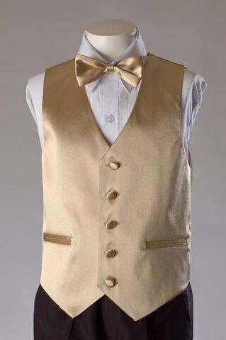 File:Vest Set-Champagne.jpg