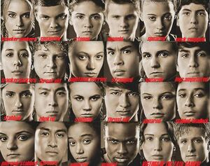 The 74th Hunger Games Tributes