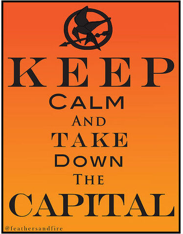 File:Keep calm and fight the capitol.jpg