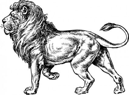 File:Lion clip art 6236.jpg