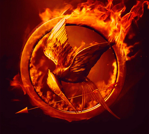 File:Large-top-5-gifts-for-hunger-games-fans-the-mockingjay-notebook-more-gif-219215.jpg