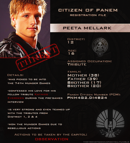 File:Peeta Mellark's file.png