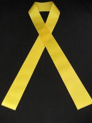 Yellow ribbon sash