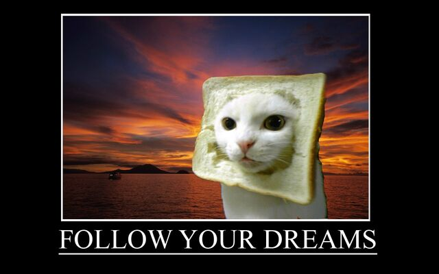 File:Follow your dreams.jpg