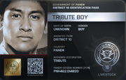 District 10 Tribute Boy ID Card 2