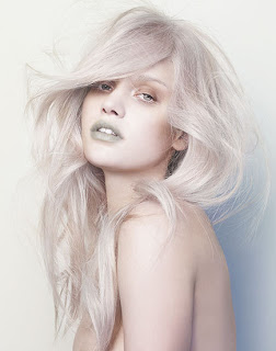 File:Silver-platinum-blonde-2 large.jpg