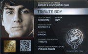 District 6 Tribute Boy ID Card 2