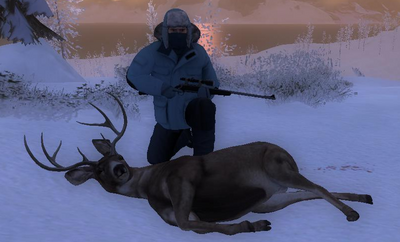 Trophy sitka deer