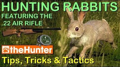 TheHunter Tips, Tricks & Tactics - HUNTING RABBITS & THE