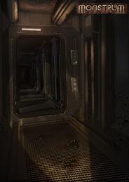 Lower deck concept
