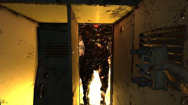 File:Hey Brute, I heard you like fire, so I put fire on your fire.jpg