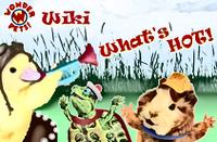 Wonder Pets! Wiki What's HOT!