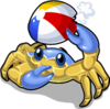 Beach ball crab single