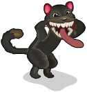 Tasmanian devil cat an