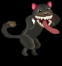 Tasmanian devil cat an