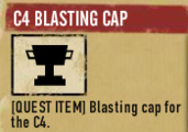 C4blastingcap sdw