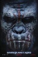Dawn of the planet of the apes ver2