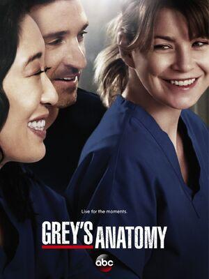 Grey'sAnatomy1Cover