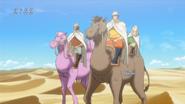 On The Reservoir Camels Eps 62