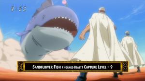 Sandflower Fish Eps 62