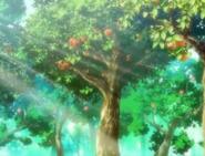 KarintouTrees