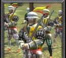 Arquebusiers (Holy Roman Empire)