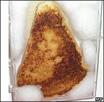 File:40534689 toastie-afp203.jpg