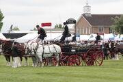 Horse & wagon teams at EofES 2010 - IMG 0144