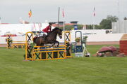 Showjumping at EofES 2010 - IMG 0129