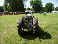 Ferguson Orchard tractor