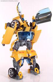 R premiumbumblebee062