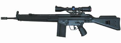 Heckler & Koch HK91