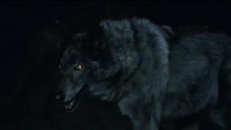 File:Werewolftrueb.JPG