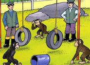 Chimps'Playtime5