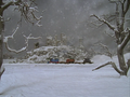 Thumbnail for version as of 20:51, December 7, 2013