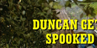 Duncan Gets Spooked