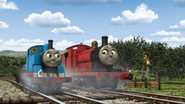 ThomasAndThePigs33