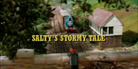 Salty's Stormy Tale