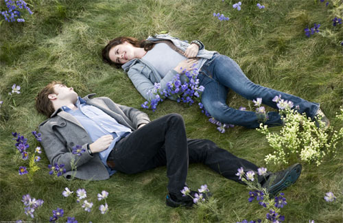 File:The meadow.jpg
