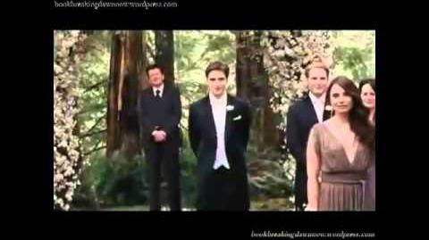 Breaking Dawn trailer in reverse.its funny