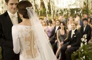 Wedding edward and bella